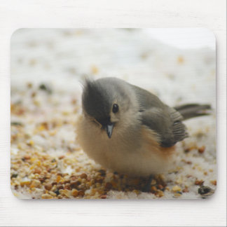 Adorable Tufted Titmouse Mouse Pad