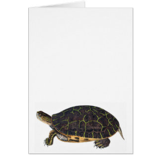 Adorable turtle note card