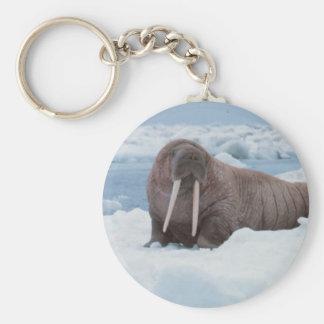 Adorable Walrus Basic Round Button Keychain