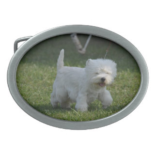 Adorable West Highland Terrier Oval Belt Buckle