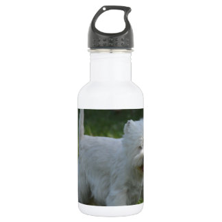 Adorable West Highland Terrier 18oz Water Bottle