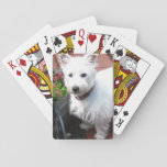 """Adorable Westie playing cards<br><div class=""""desc"""">These playing cards feature an adorable Westie. A unique and charming gift for dog lovers!</div>"""