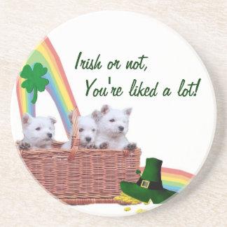 Adorable Westie St Patrick's Day Beverage Coaster