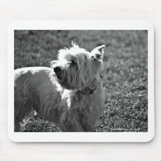 Adorable Westie Terrier Collection Mouse Pad