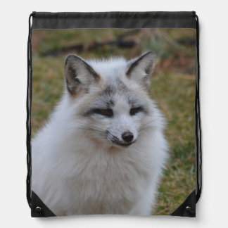 Adorable White Fox Drawstring Bag