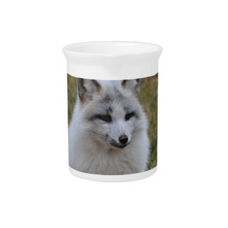 Adorable White Fox Drink Pitcher