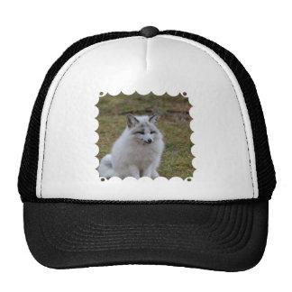 Adorable White Fox Trucker Hat