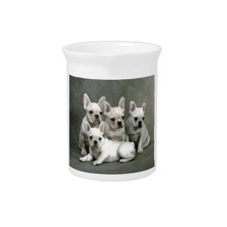 Adorable White French Bulldogs Pitcher