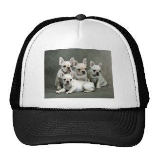 Adorable White French Bulldogs Trucker Hat