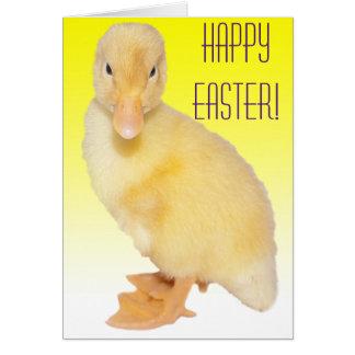 Adorable Yellow Duckling Photograph Card