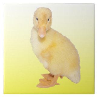 Adorable Yellow Duckling Photograph Ceramic Tile