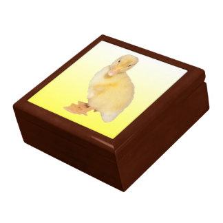 Adorable Yellow Duckling Photograph Gift Box