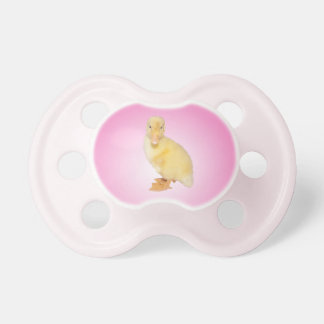 Adorable Yellow Duckling Photograph Pacifiers