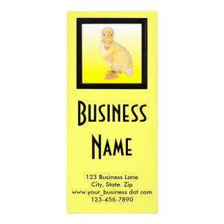 Adorable Yellow Duckling Photograph Custom Rack Card