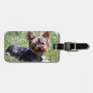 Adorable Yorkie Multiple Products Selected Bag Tag