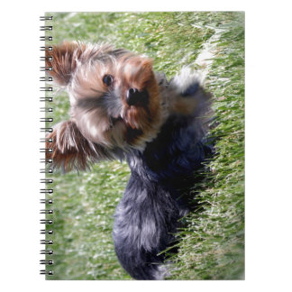 Adorable Yorkie Multiple Products Selected Notebook