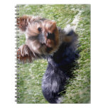 Adorable Yorkie Multiple Products Selected Spiral Notebook