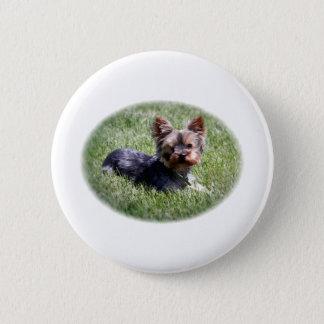 Adorable Yorkie Pinback Button