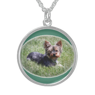 Adorable Yorkie Sterling Silver Round Necklace
