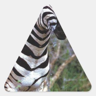 Adorable Zebra Triangle Sticker