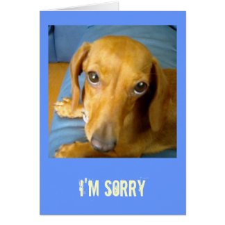 adorableeyes, I'm Sorry Card