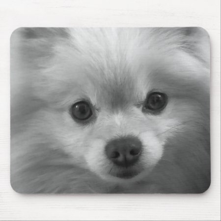 Adorably Cute Pomeranian Puppy Mouse Pad