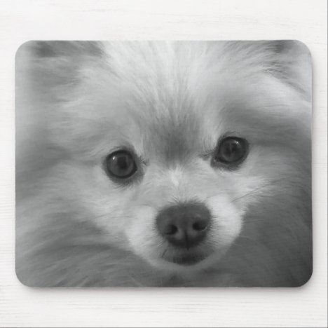 Adorably Cute Pomeranian Puppy Mouse Pad
