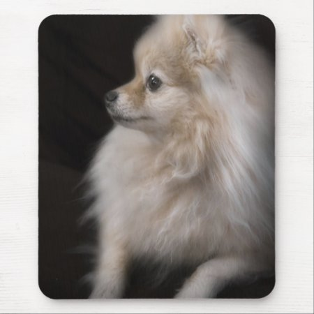 Adorably Cute Posing Pomeranian Puppy Mouse Pad
