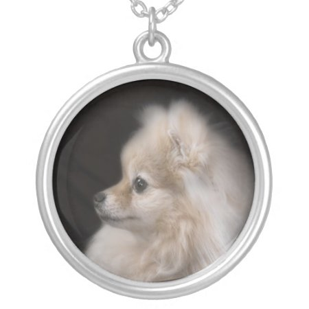 Adorably Cute Posing Pomeranian Puppy Silver Plated Necklace