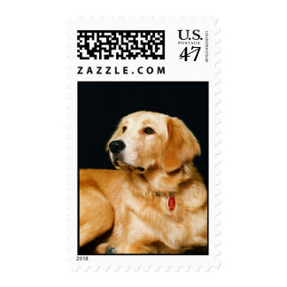 Adorably Cute Puppy Dog Postage 1Med