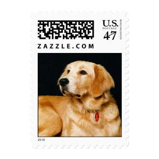 Adorably Cute Puppy Dog Postage 1Sm