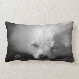 Adorably Cute Snoozing Pomeranian Monogram Lumbar Pillow