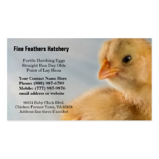 Adorably Cute Yellow Baby Chick Photo Business Card Templates