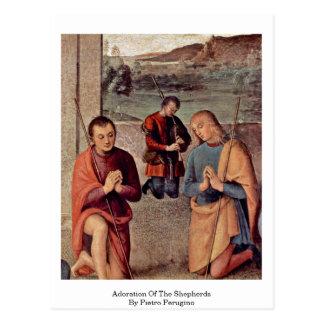 Adoration Of The Shepherds By Pietro Perugino Postcard