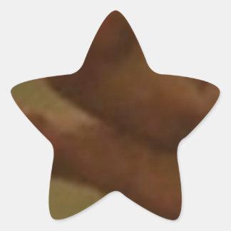 ADORE MY FEET STAR STICKER