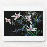 Adorno blanco de las orquídeas alfombrilla de ratón