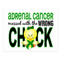 Adrenal Cancer Messed With Wrong Chick Postcard