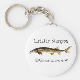 Adriatic Sturgeon Item Keychain