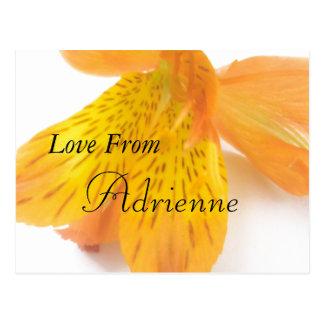 Adrienne Postcard