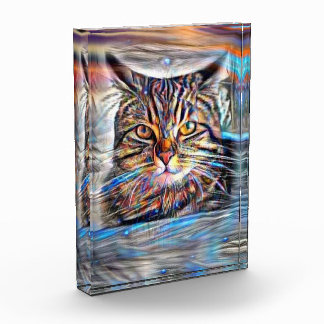 Adrift in Colors Abstract Revolution Cat Acrylic Award