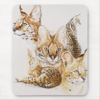 Adroit Mouse Pad