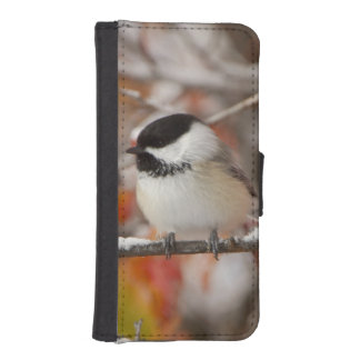 Adult Black-capped Chickadee in Snow, Grand iPhone SE/5/5s Wallet Case