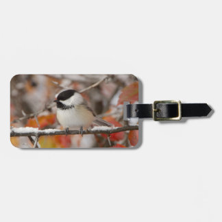Adult Black-capped Chickadee in Snow, Grand Tag For Luggage