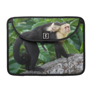 Adult Capuchin Monkey Carrying Baby On Its Back Sleeves For MacBooks