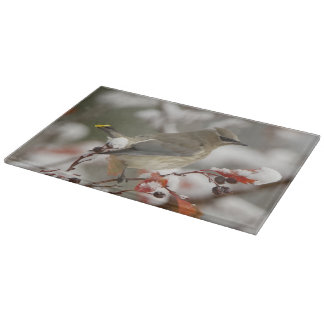 Adult Cedar Waxwing on hawthorn with snow, 3 Cutting Board