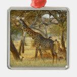 Adult female and juvenile Giraffe, Giraffa Christmas Ornament