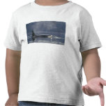 Adult female Orca Whale Orcinus Orca), Puget Tee Shirts
