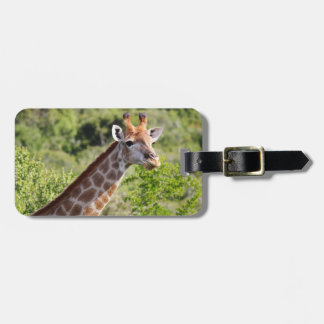 Adult Giraffe Face and Neck Luggage Tag