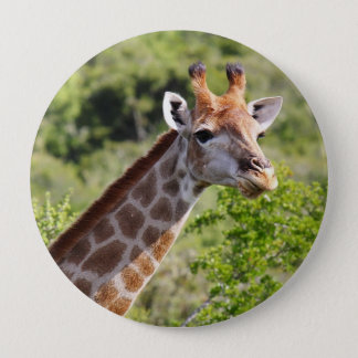 Adult Giraffe Face and Neck Pinback Button