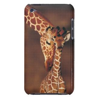 Adult Giraffe with calf (Giraffa camelopardalis) iPod Case-Mate Case